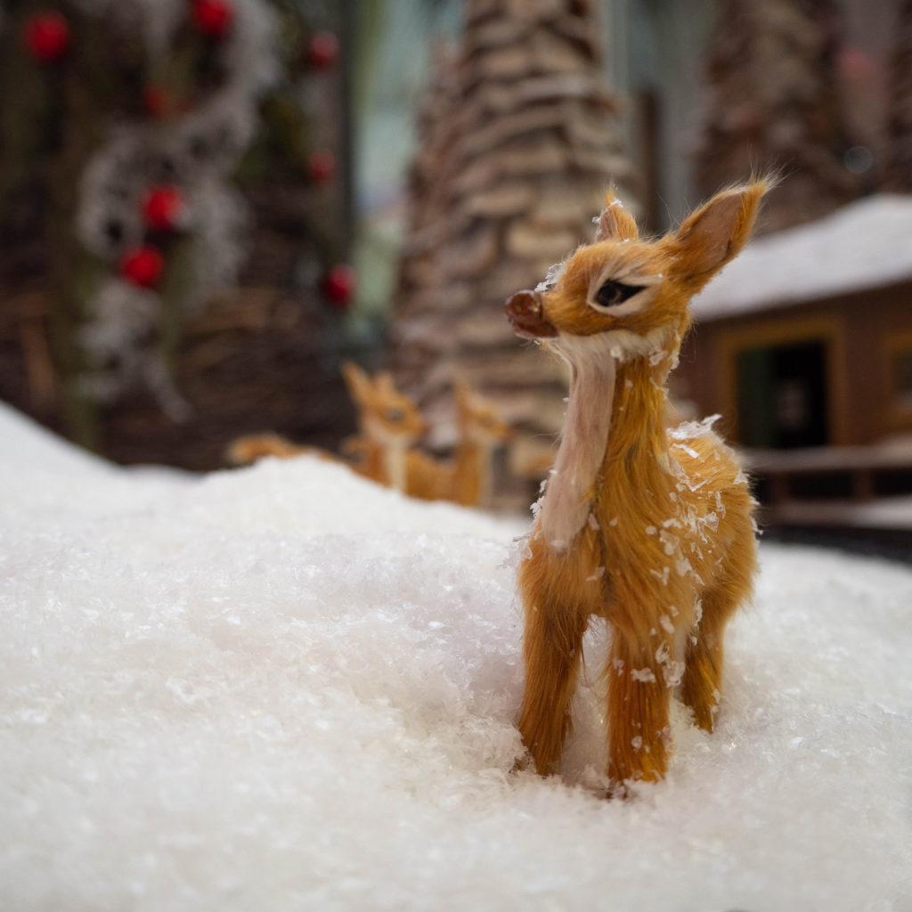 Reh auf Schnee vor Weihnachtsdekoration